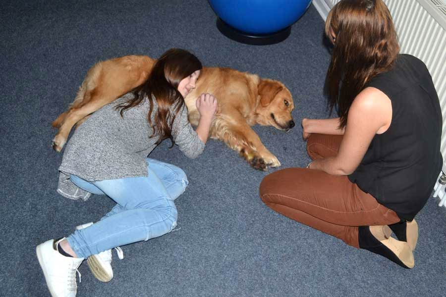 Therapiehund Emma in der Praxis für Logopädie in Kücknitz